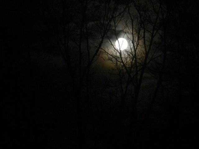 Wordless Wednesday–My Love Affair with the Moon