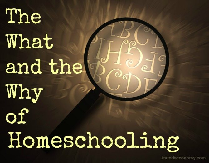 The What and the Why of Homeschooling