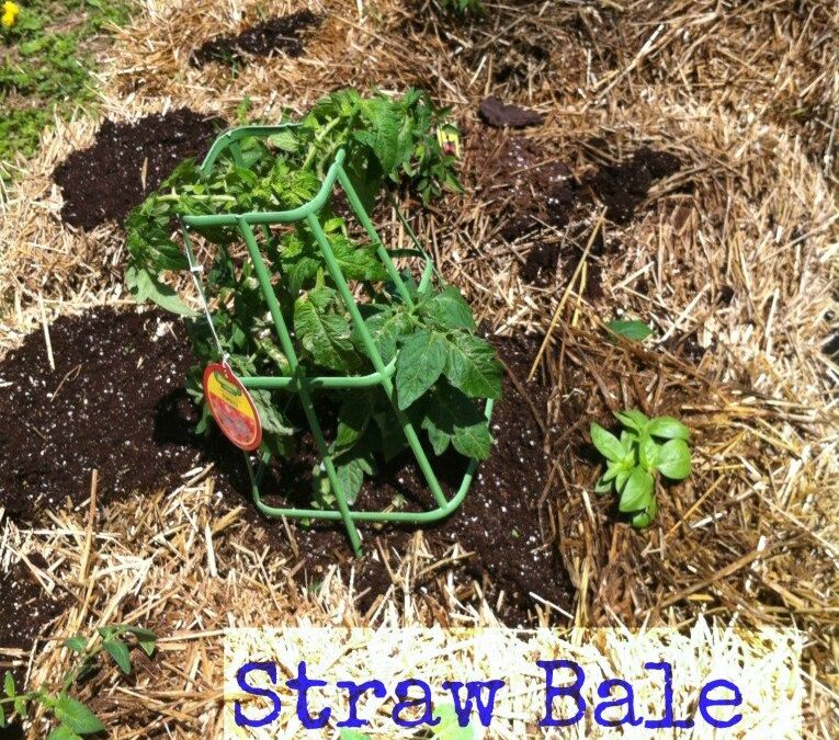 Naturally Frugal: Straw Bale Gardening